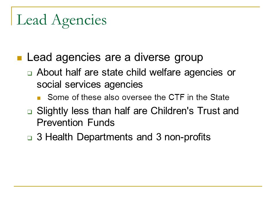 Lead Agencies Lead agencies are a diverse group  About half are state child welfare agencies or social services agencies Some of these also oversee the CTF in the State  Slightly less than half are Children s Trust and Prevention Funds  3 Health Departments and 3 non-profits