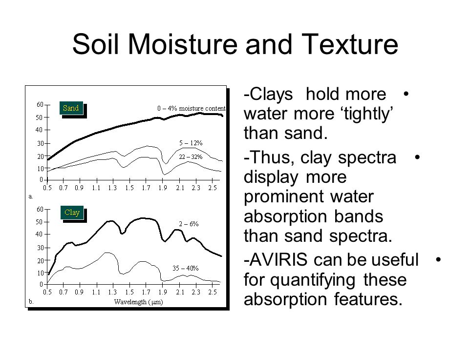 Soil Moisture and Texture -Clays hold more water more 'tightly' than sand.