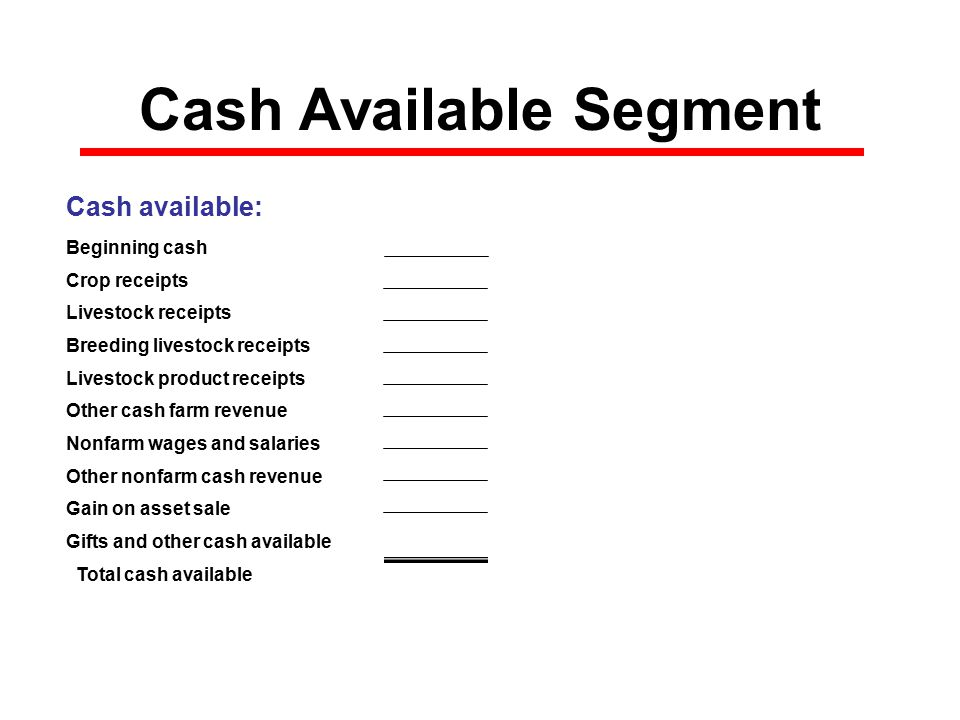 Cash Available Segment Cash available: Beginning cash$0 Crop receipts$0 Livestock receipts$0 Breeding livestock receipts$0 Livestock product receipts$0 Other cash farm revenue$0 Nonfarm wages and salaries$0 Other nonfarm cash revenue$0 Gain on asset sale$0 Gifts and other cash available$0 Total cash available$0