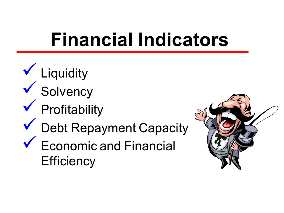 Financial Indicators Liquidity Solvency Profitability Debt Repayment Capacity Economic and Financial Efficiency