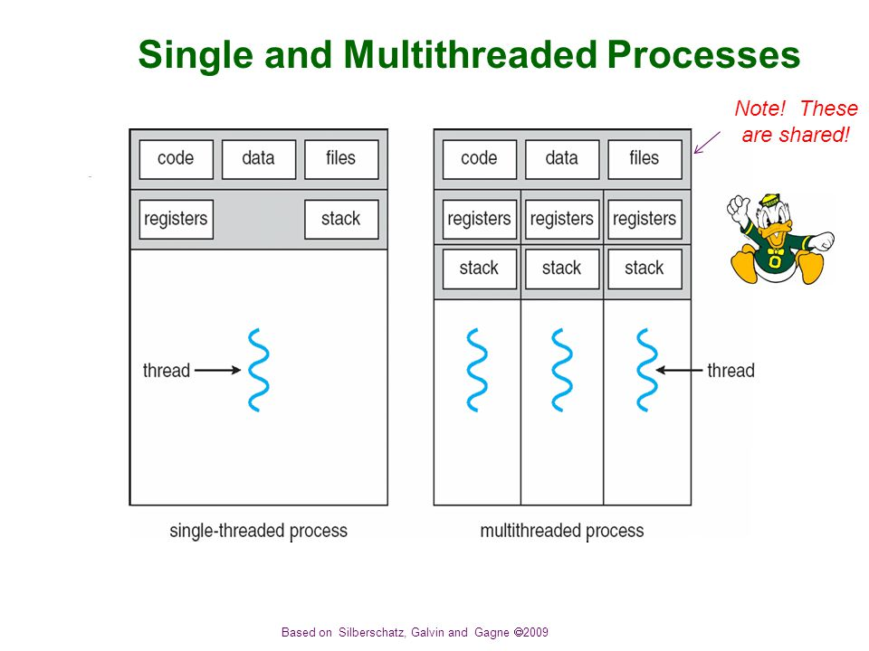 Based on Silberschatz, Galvin and Gagne  2009 Single and Multithreaded Processes Note.