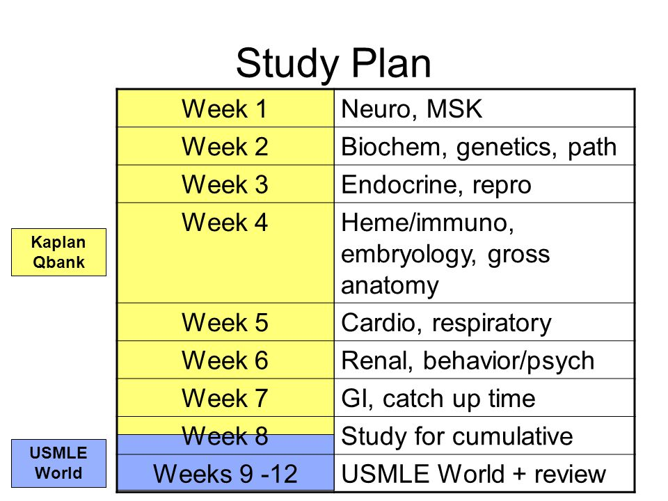 USMLE Step 1 Study Plan Kelsey Richardson MSIII Louis Hirsch MSIII