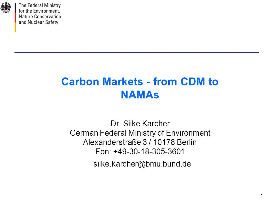 1 Carbon Markets - from CDM to NAMAs Dr.