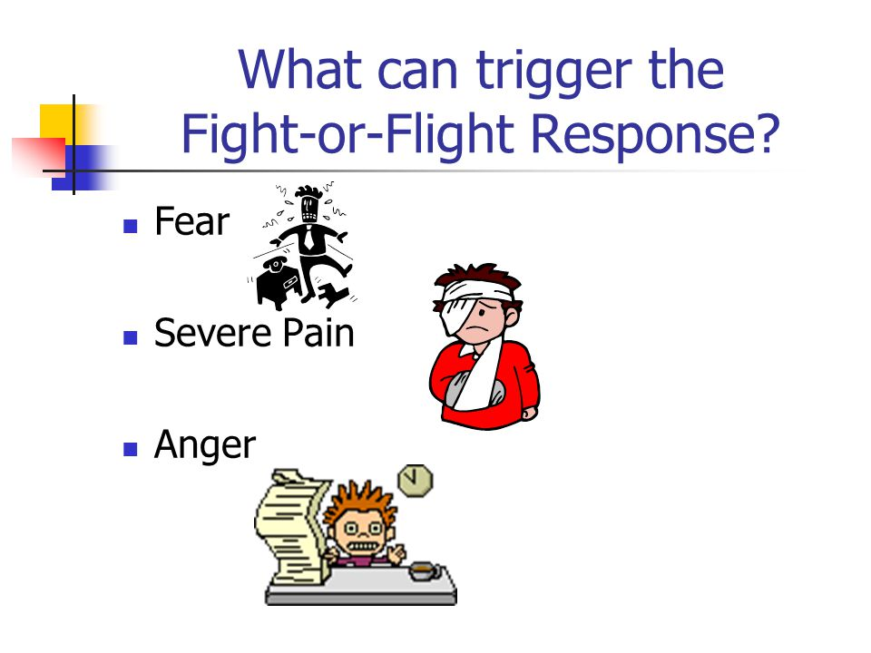 Physical Reactions of Fight or Flight Response Hearing ability increases Breathing increases Sugar in blood increases giving you more energy Digestion slows down Amount of stomach acid increases Liver releases sugar for quick energy Immune system slows down, causing an increased chance of becoming ill