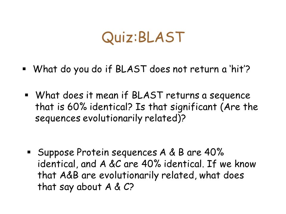 Quiz:BLAST  What do you do if BLAST does not return a 'hit'.