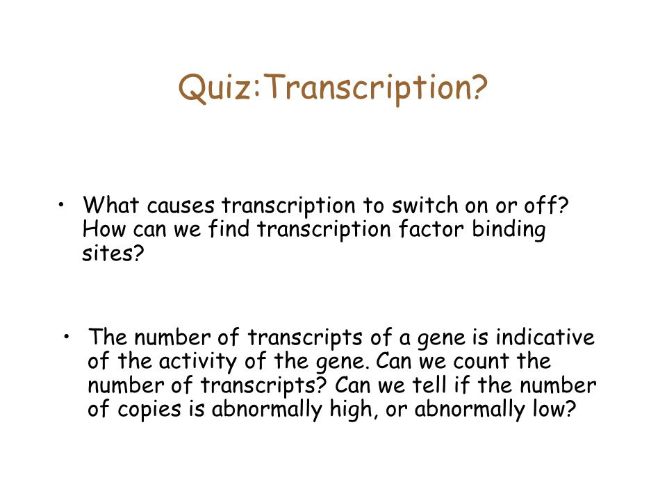 Quiz:Transcription. What causes transcription to switch on or off.