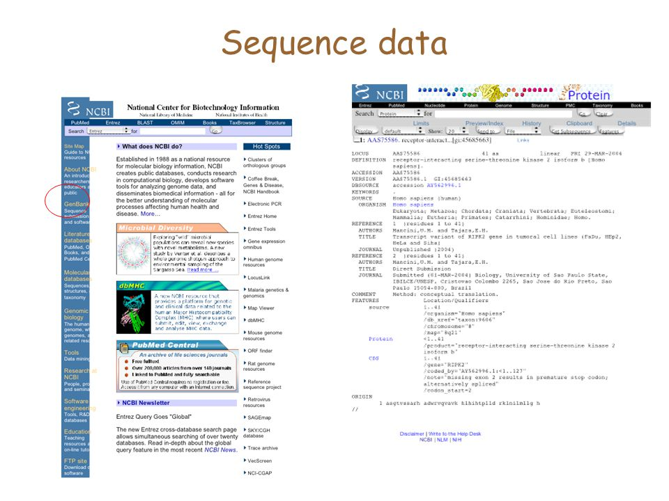 Sequence data