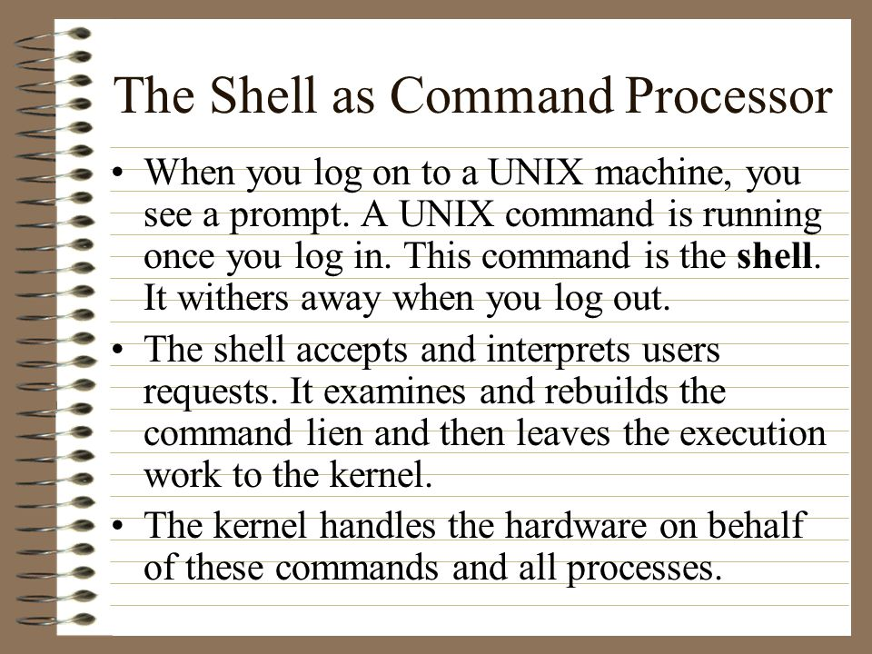 The Shell as Command Processor When you log on to a UNIX machine, you see a prompt.