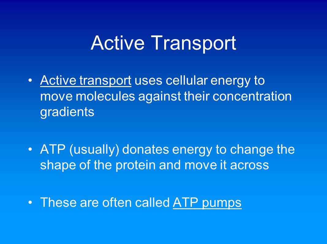 Active Transport Active transport uses cellular energy to move molecules against their concentration gradients ATP (usually) donates energy to change the shape of the protein and move it across These are often called ATP pumps