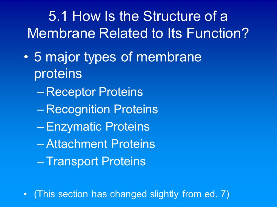 5.1 How Is the Structure of a Membrane Related to Its Function.