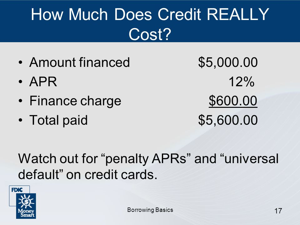 Borrowing Basics 17 How Much Does Credit REALLY Cost.