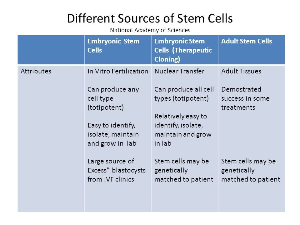 embryonic cell and Difference between adult stem