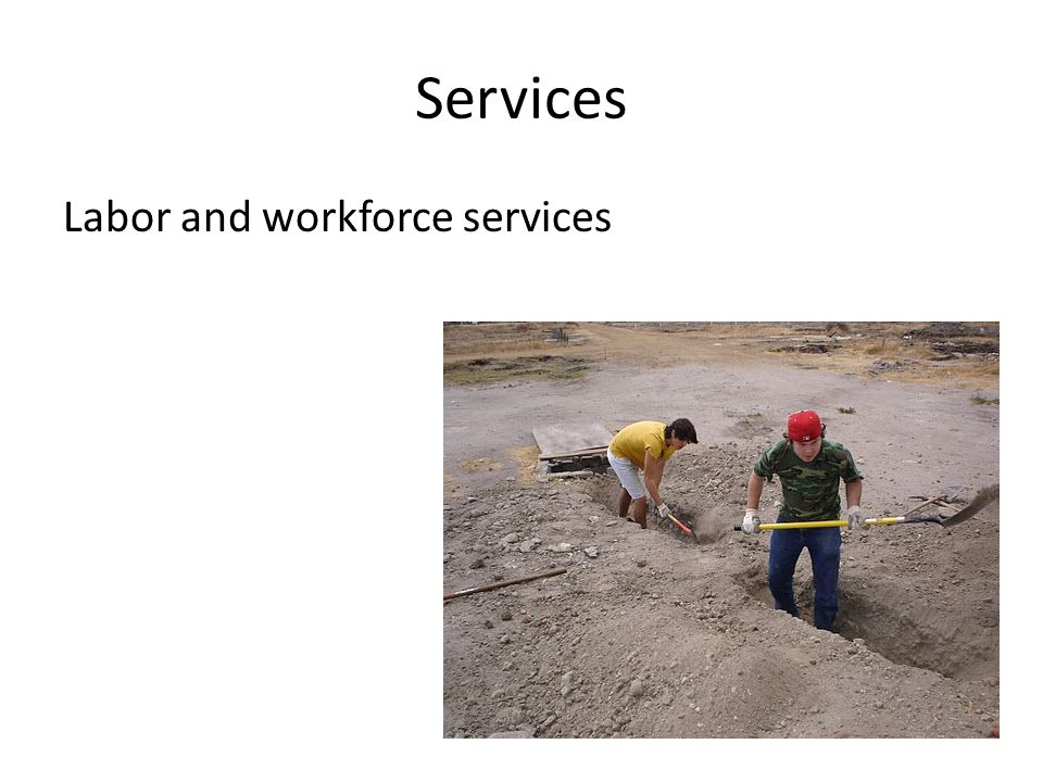 Services Labor and workforce services