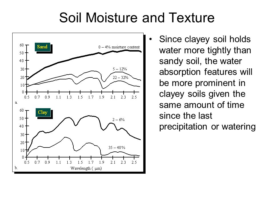 Soil Moisture and Texture Since clayey soil holds water more tightly than sandy soil, the water absorption features will be more prominent in clayey soils given the same amount of time since the last precipitation or watering