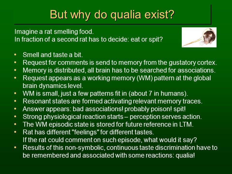But why do qualia exist. Imagine a rat smelling food.