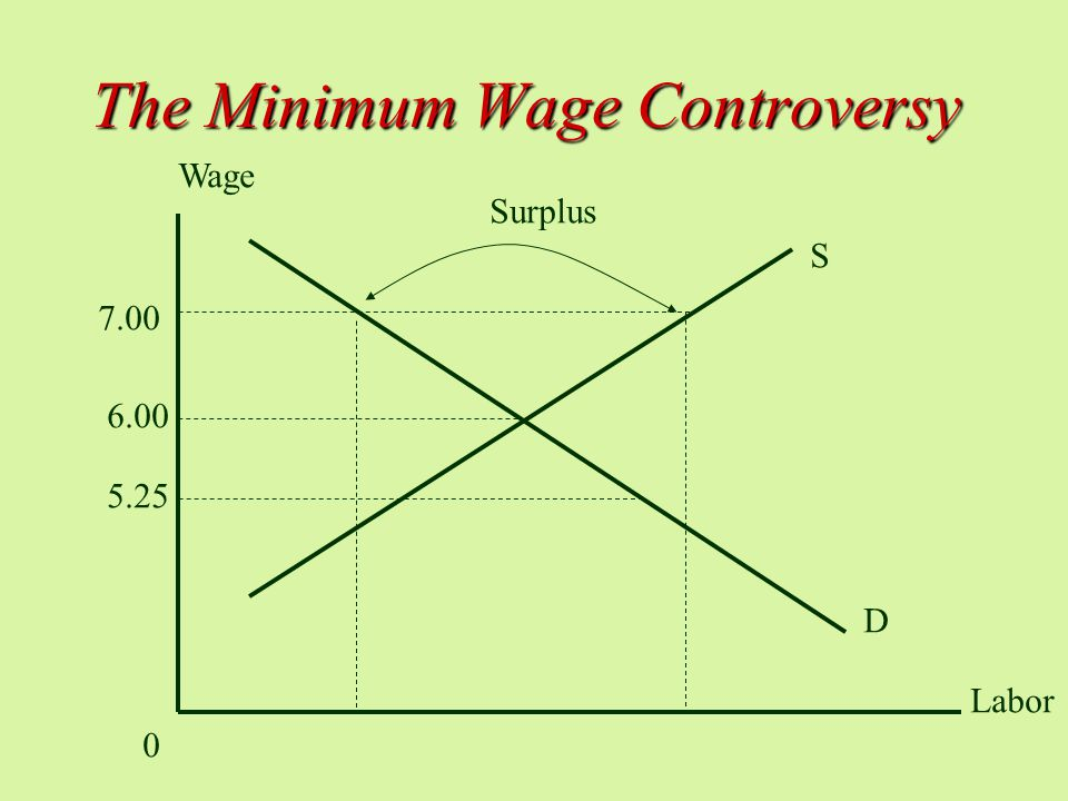 The Minimum Wage Controversy D S Wage 0 Labor Surplus