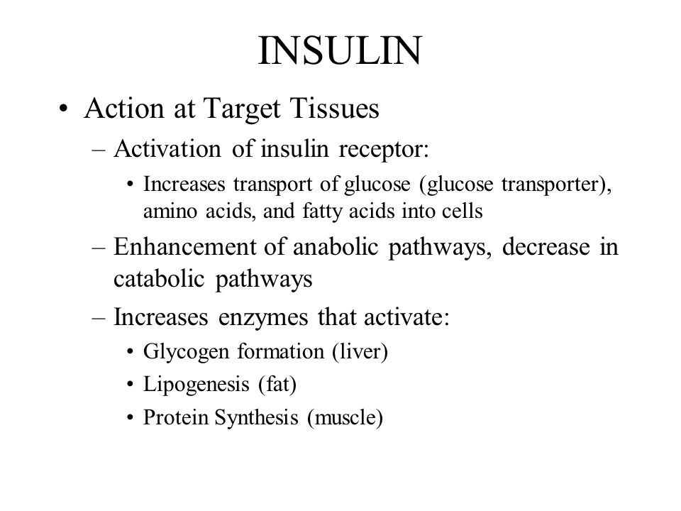 INSULIN Action at Target Tissues –Activation of insulin receptor: Increases transport of glucose (glucose transporter), amino acids, and fatty acids into cells –Enhancement of anabolic pathways, decrease in catabolic pathways –Increases enzymes that activate: Glycogen formation (liver) Lipogenesis (fat) Protein Synthesis (muscle)