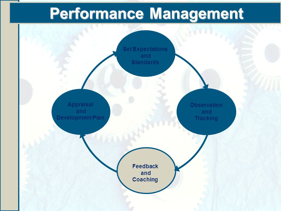 Performance Management Appraisal and Development Plan Set Expectations and Standards Observation and Tracking Feedback and Coaching