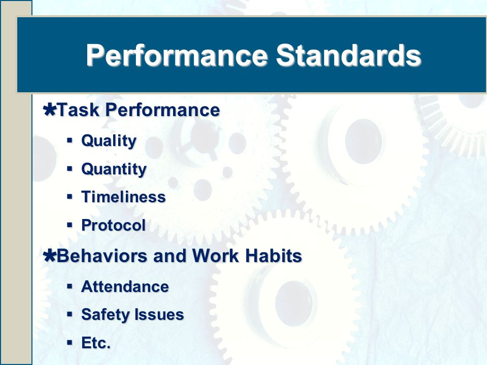 Performance Standards  Task Performance  Quality  Quantity  Timeliness  Protocol  Behaviors and Work Habits  Attendance  Safety Issues  Etc.