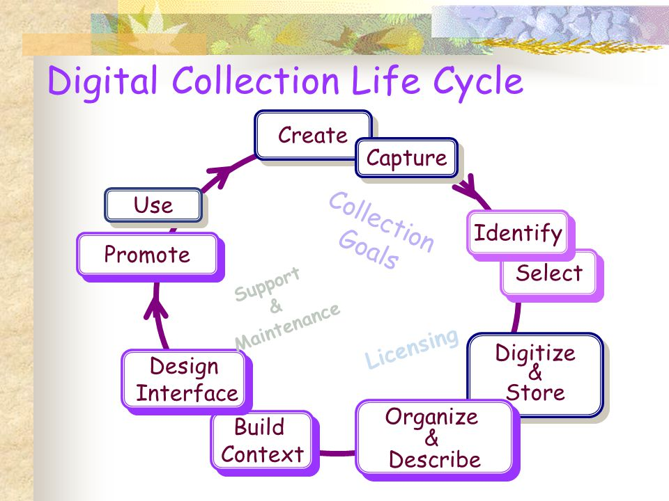 Create Select Digitize & Store Digitize & Store Organize & Describe Organize & Describe Capture Promote Build Context Build Context Design Interface Design Interface Use Digital Collection Life Cycle Collection Goals Support & Maintenance Licensing Identify