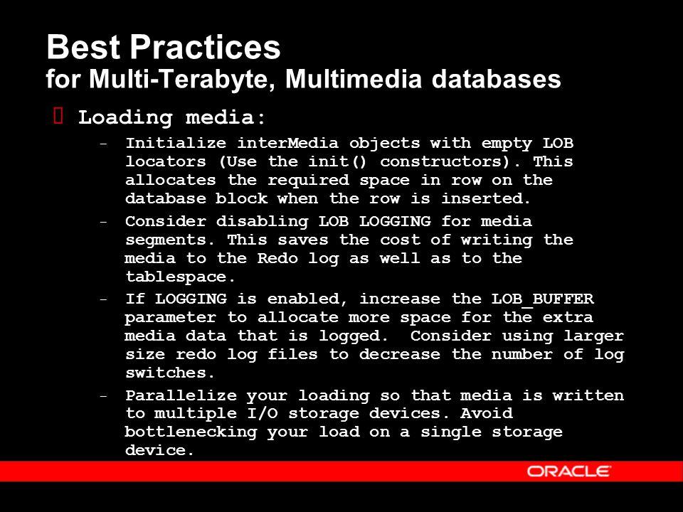 Multimedia Databases, Multi-Terabyte Performance Oracle10 g