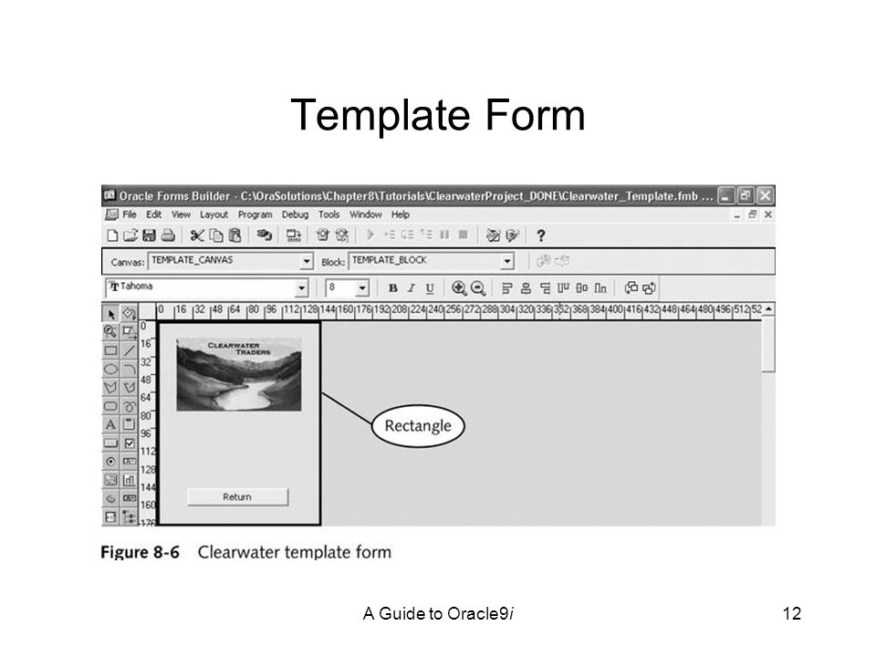A Guide to Oracle9i12 Template Form