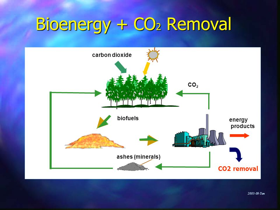 Yan Bioenergy + CO 2 Removal energy products biofuels ashes (minerals) carbon dioxide CO 2 CO2 removal