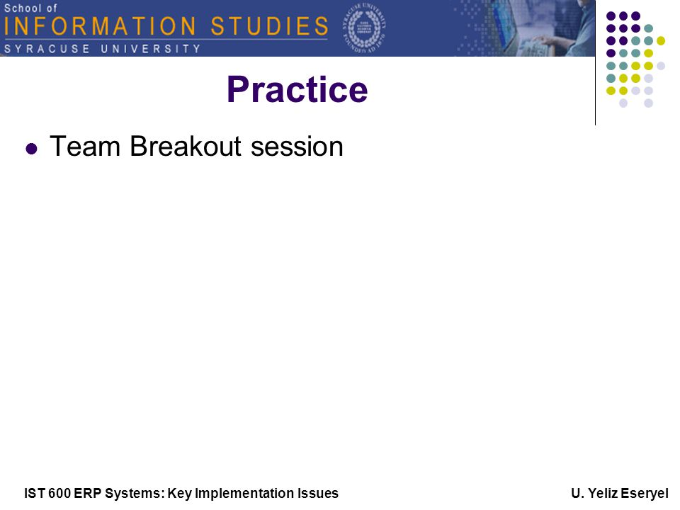 IST 600 ERP Systems: Key Implementation Issues U. Yeliz Eseryel Practice Team Breakout session