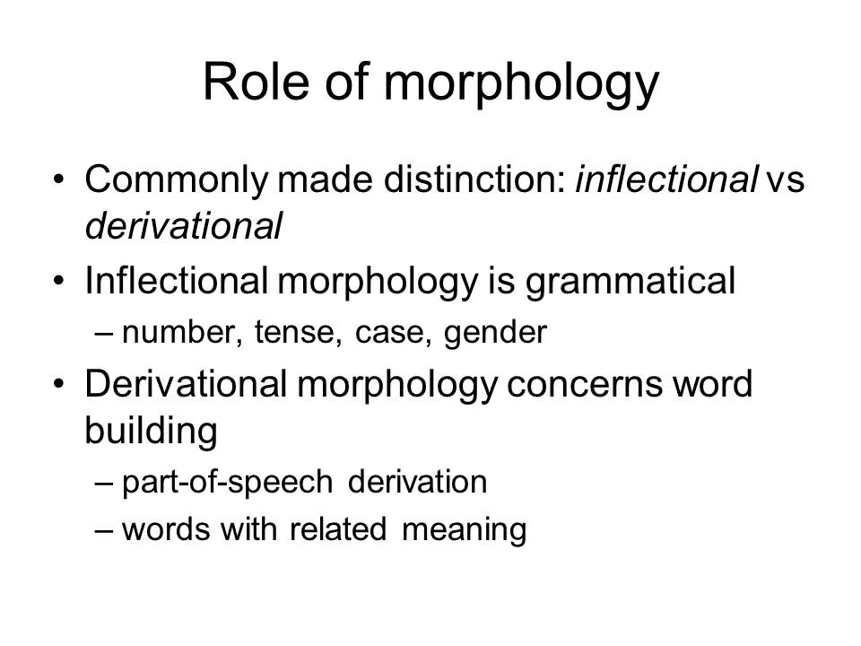 Role of morphology Commonly made distinction: inflectional vs derivational Inflectional morphology is grammatical –number, tense, case, gender Derivational morphology concerns word building –part-of-speech derivation –words with related meaning