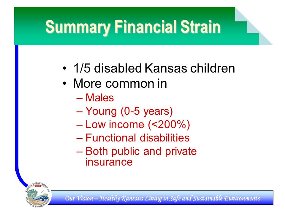 Our Vision – Healthy Kansans Living in Safe and Sustainable Environments Summary Financial Strain 1/5 disabled Kansas children More common in –Males –Young (0-5 years) –Low income (<200%) –Functional disabilities –Both public and private insurance