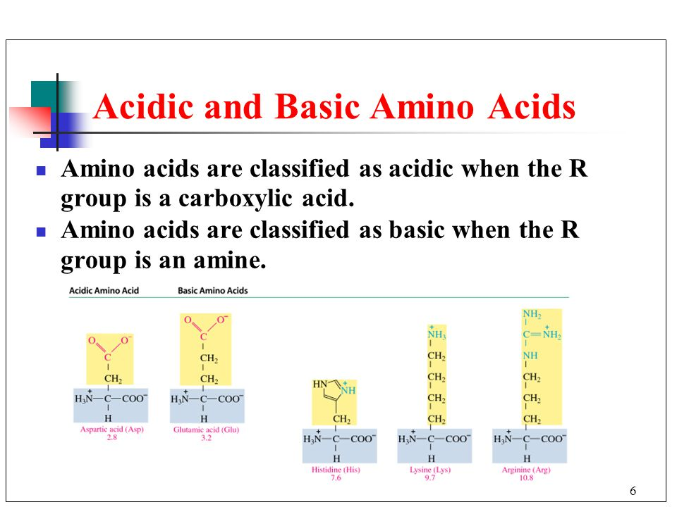 Functions of proteins 202 amino acids 203 amino acids as acids and 6 acidic and basic amino acids amino acids are classified as acidic when the r group altavistaventures
