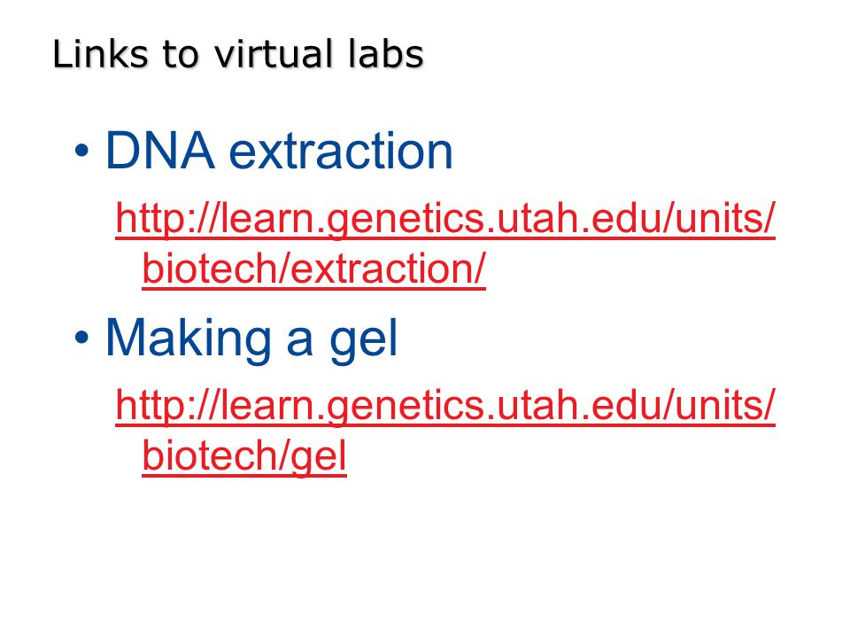 Links to virtual labs DNA extraction   biotech/extraction/ Making a gel   biotech/gel