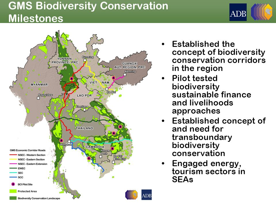 GMS Biodiversity Conservation Milestones Established the concept of biodiversity conservation corridors in the region Pilot tested biodiversity sustainable finance and livelihoods approaches Established concept of and need for transboundary biodiversity conservation Engaged energy, tourism sectors in SEAs