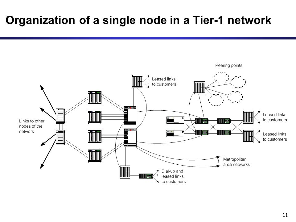 11 Organization of a single node in a Tier-1 network