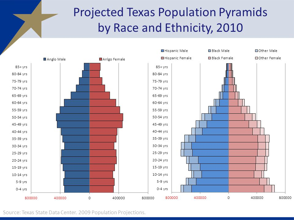 Projected Texas Population Pyramids by Race and Ethnicity, 2010 Source: Texas State Data Center.