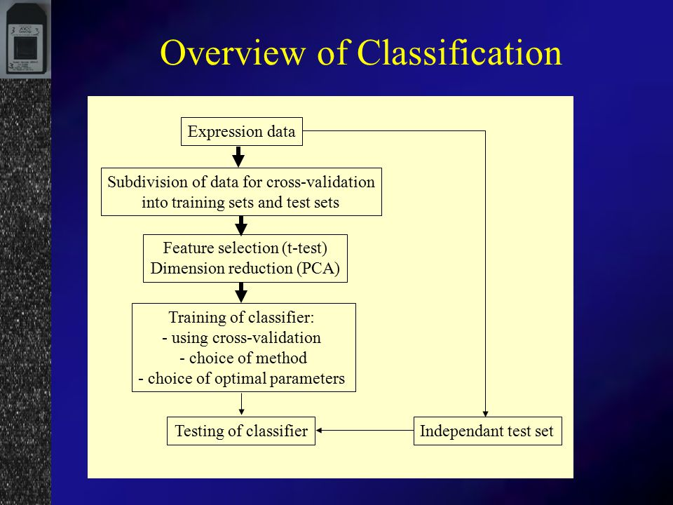 Classification of Microarray Data. Sample Preparation Hybridization ...