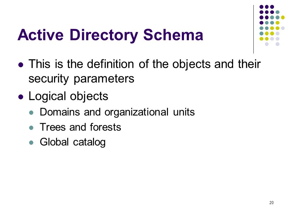 20 Active Directory Schema This is the definition of the objects and their security parameters Logical objects Domains and organizational units Trees and forests Global catalog