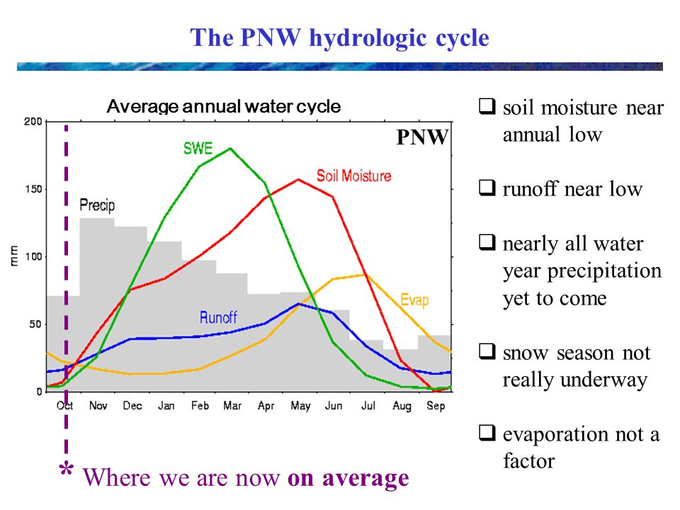 Average annual water cycle The PNW hydrologic cycle PNW * Where we are now on average  soil moisture near annual low  runoff near low  nearly all water year precipitation yet to come  snow season not really underway  evaporation not a factor