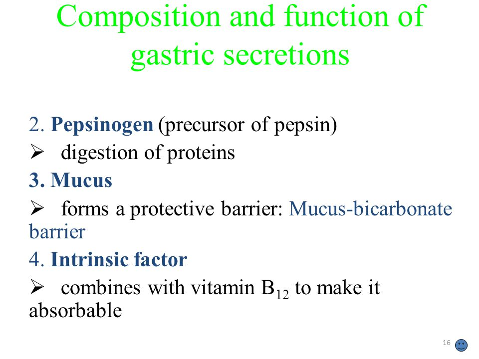 16 Composition and function of gastric secretions 2.