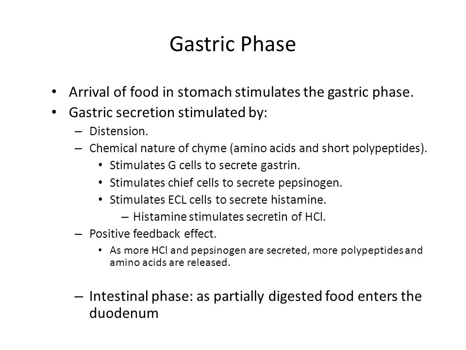 Arrival of food in stomach stimulates the gastric phase.