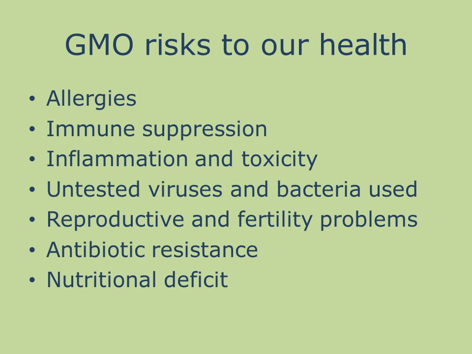 GMO risks to our health Allergies Immune suppression Inflammation and toxicity Untested viruses and bacteria used Reproductive and fertility problems Antibiotic resistance Nutritional deficit