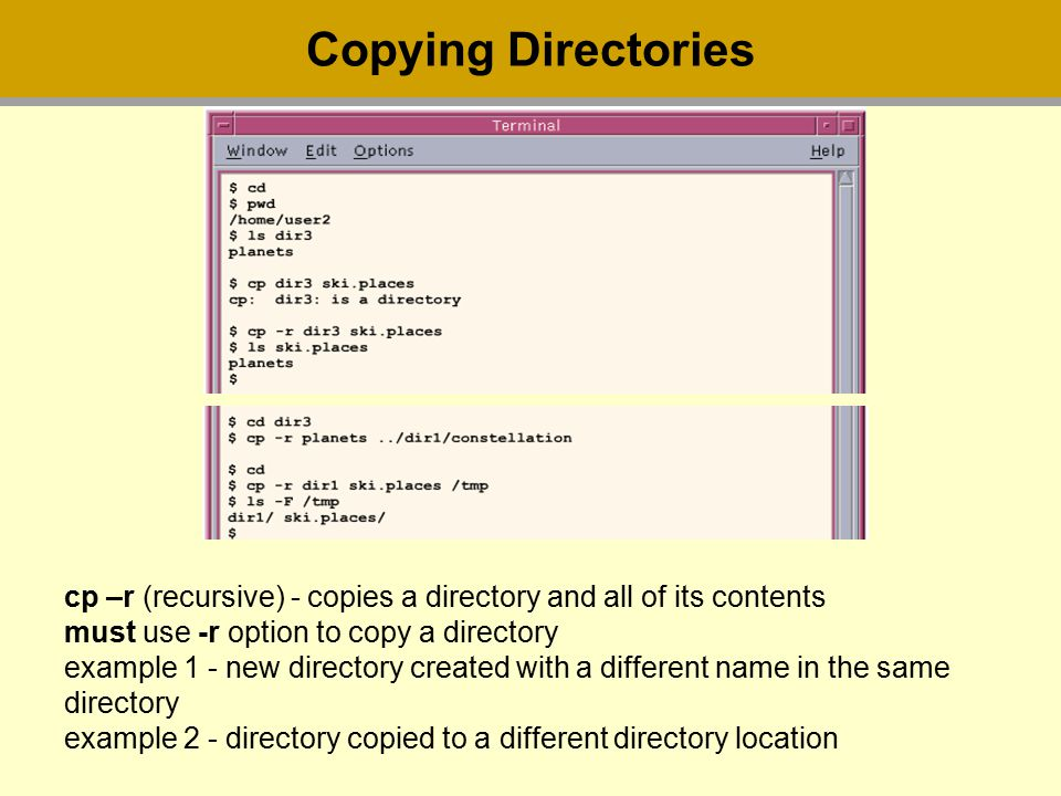 Copying Directories cp –r (recursive) - copies a directory and all of its contents must use -r option to copy a directory example 1 - new directory created with a different name in the same directory example 2 - directory copied to a different directory location