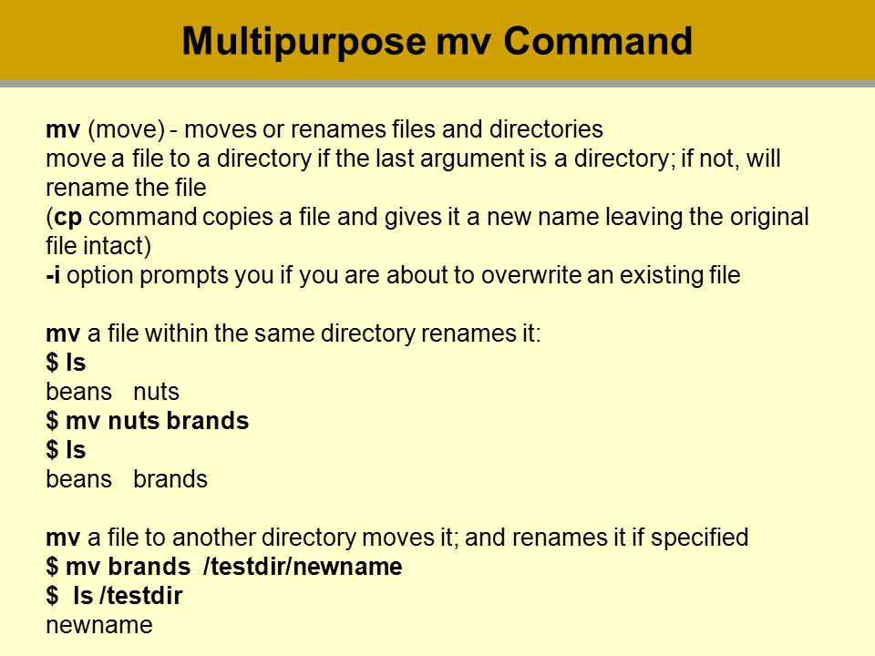Multipurpose mv Command mv (move) - moves or renames files and directories move a file to a directory if the last argument is a directory; if not, will rename the file (cp command copies a file and gives it a new name leaving the original file intact) -i option prompts you if you are about to overwrite an existing file mv a file within the same directory renames it: $ ls beansnuts $ mv nuts brands $ ls beansbrands mv a file to another directory moves it; and renames it if specified $ mv brands /testdir/newname $ ls /testdir newname