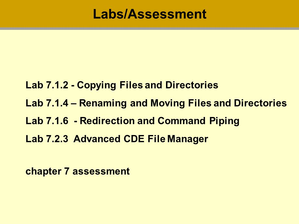 Lab Copying Files and Directories Lab – Renaming and Moving Files and Directories Lab Redirection and Command Piping Lab Advanced CDE File Manager chapter 7 assessment Labs/Assessment