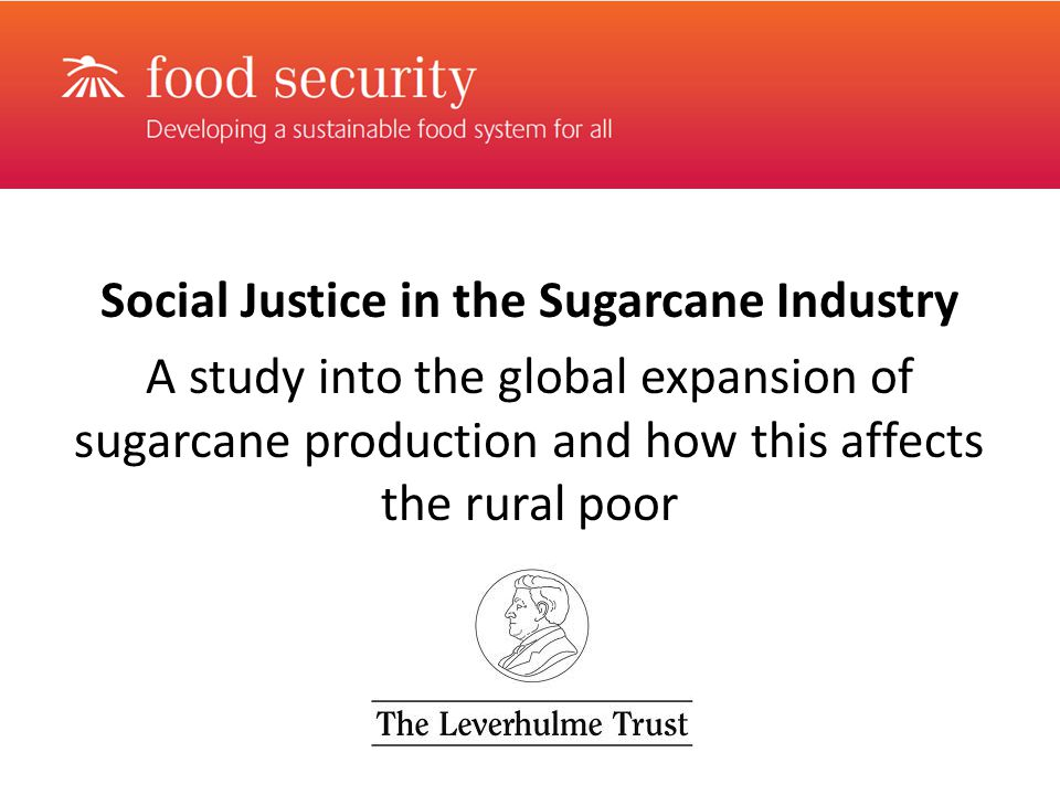 Social Justice in the Sugarcane Industry A study into the global expansion of sugarcane production and how this affects the rural poor