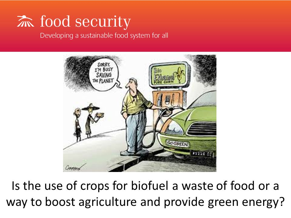 Is the use of crops for biofuel a waste of food or a way to boost agriculture and provide green energy
