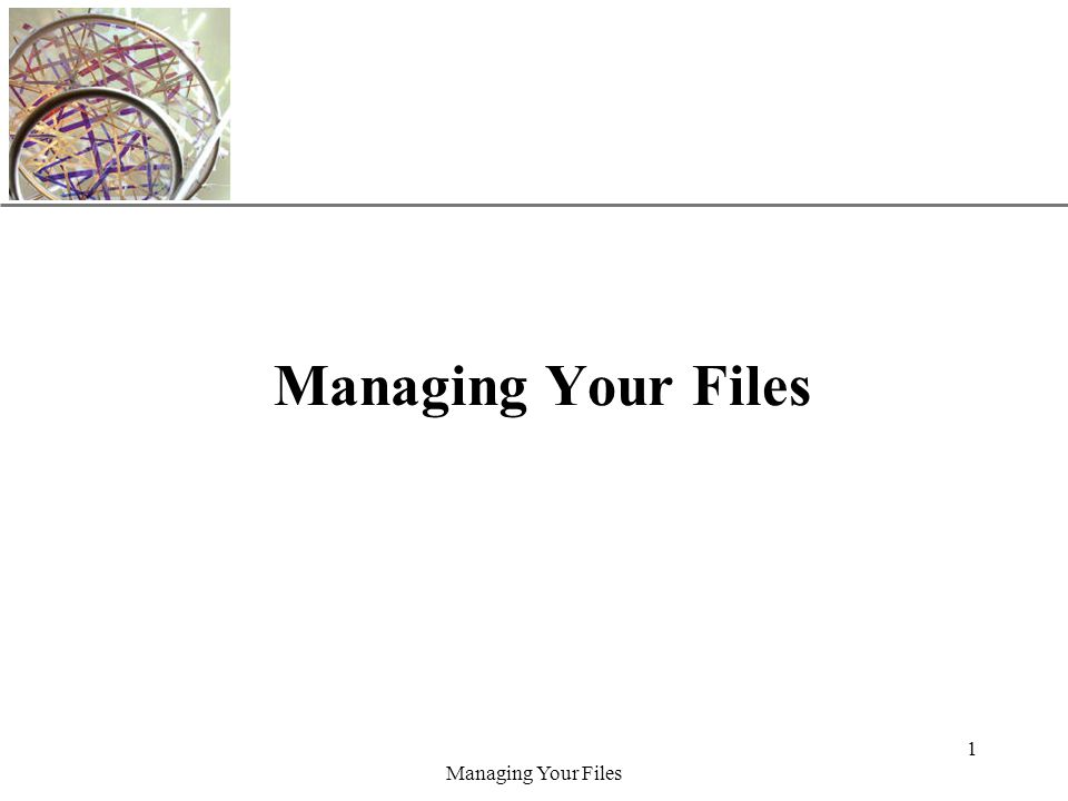 XP Managing Your Files 1
