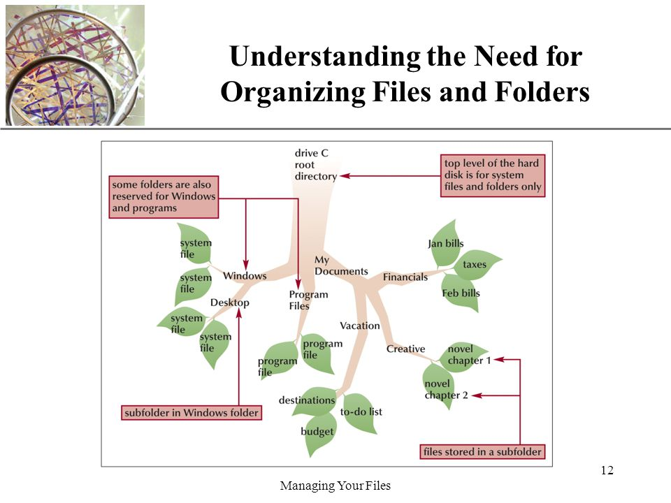 XP Managing Your Files 12 Understanding the Need for Organizing Files and Folders