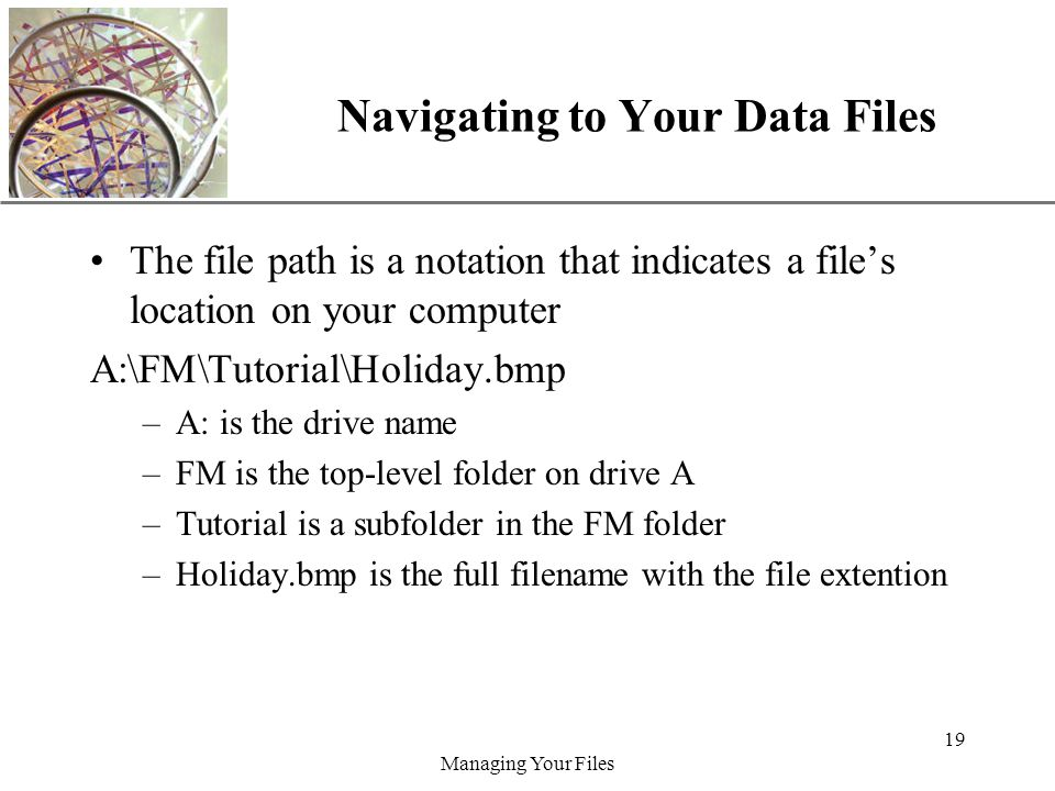 XP Managing Your Files 19 Navigating to Your Data Files The file path is a notation that indicates a file's location on your computer A:\FM\Tutorial\Holiday.bmp –A: is the drive name –FM is the top-level folder on drive A –Tutorial is a subfolder in the FM folder –Holiday.bmp is the full filename with the file extention