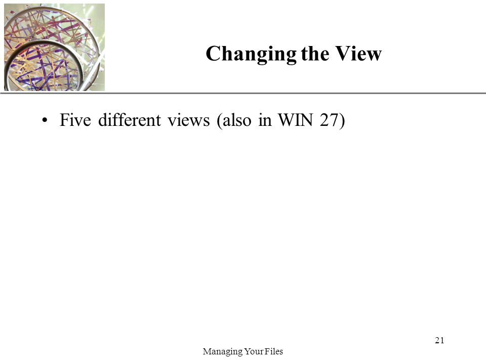 XP Managing Your Files 21 Changing the View Five different views (also in WIN 27)